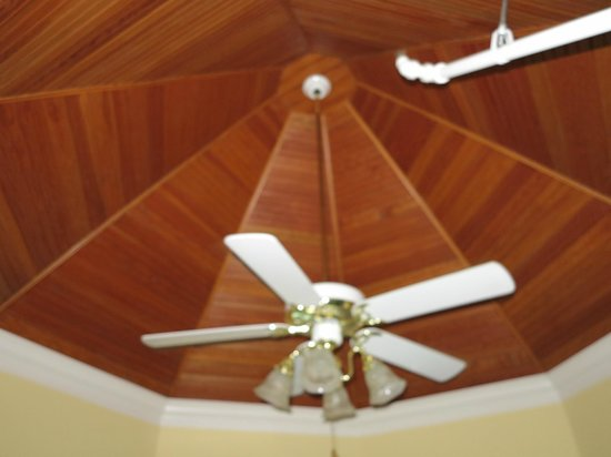 Brigadoon Bed and Breakfast: Ceiling (Penthouse suite)