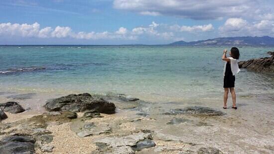 Surfside B&B : サーフサイド近くのダイアモンドビーチ♪