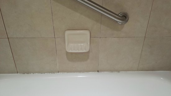 Doubletree Hotel Columbus Worthington: Mold/mildew on grout, missing grout around tub