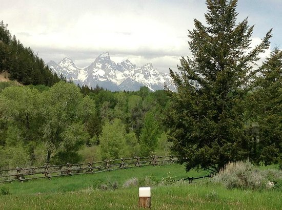 Gros Ventre River Ranch : View from the Dining room
