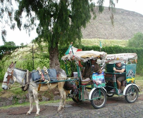 Mexico City Urban Adventures: Burro Taxi in Teotihuacan