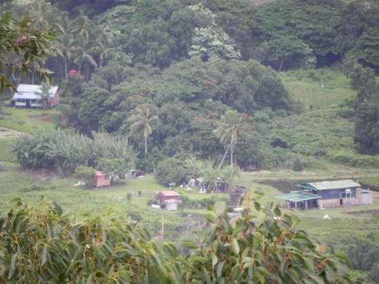 Waipio Valley Lookout: Peaceful village under Waipio Valley from lookout