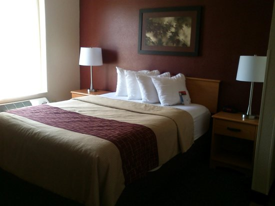 Red Roof Inn Fargo: Bedroom 1 Deluxe Queen Non-Smoking