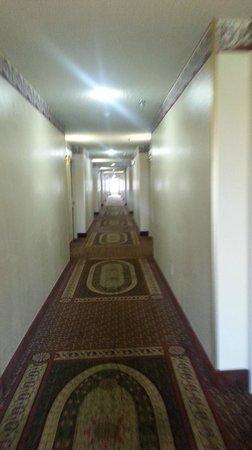 Howard Johnson Scott Lafayette: Interior corridors