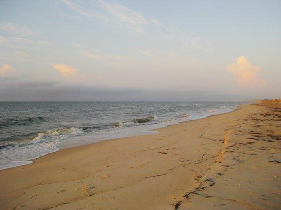 Blue Parrot: a great beach