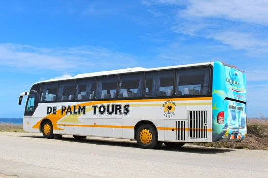 our tour bus picture of de palm tours oranjestad tripadvisor. Black Bedroom Furniture Sets. Home Design Ideas