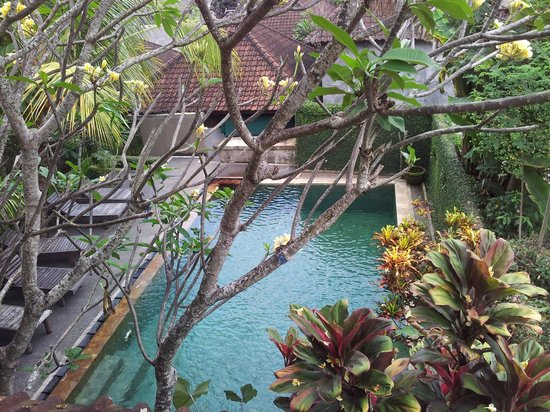 Dewa Bungalows: Swimming pool from Upstairs
