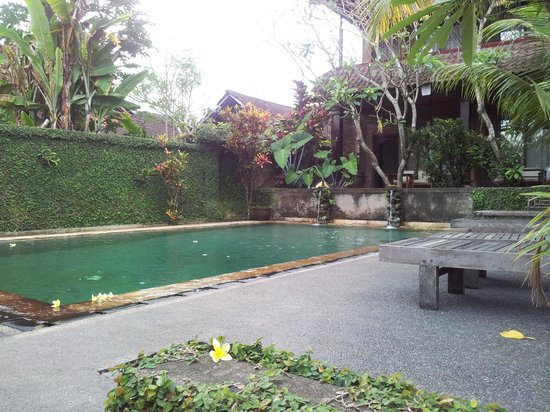 Dewa Bungalows : Swimming pool from downstairs