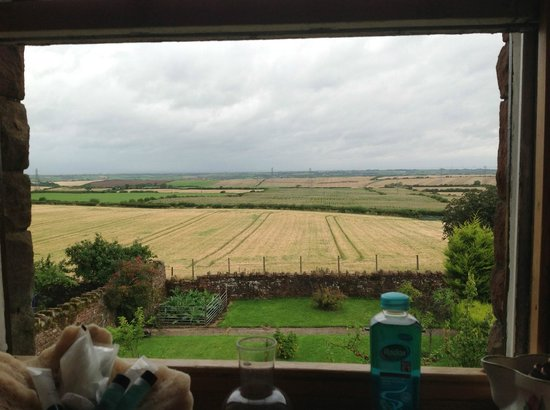 Castlemont Bed and Breakfast: View from Bathroom