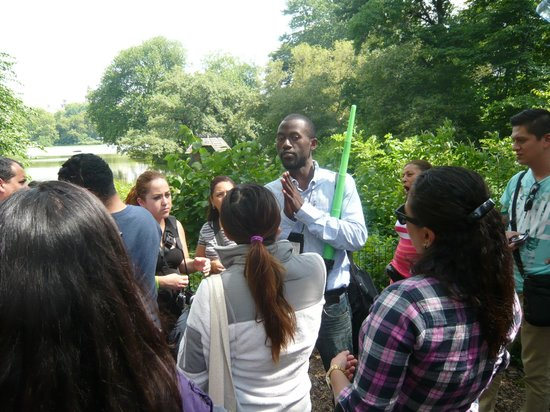 All New York Fun Tours: Central Park