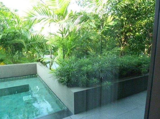 Capella Singapore: A small pool at the back of the villa