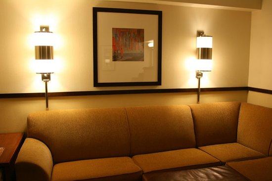 Hyatt Place Phoenix - North: Schlafsofa
