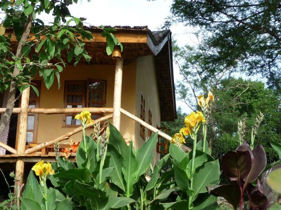 The African House: Cottage