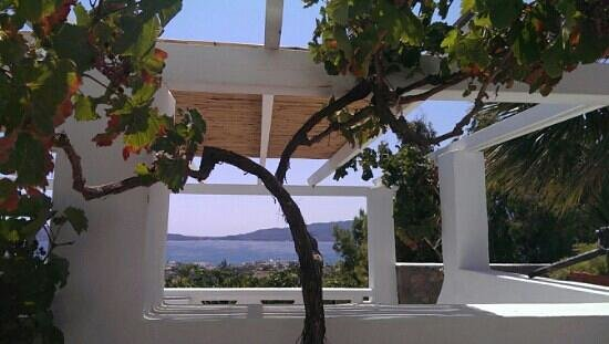 Villa Mina: view from our breakfast terrace