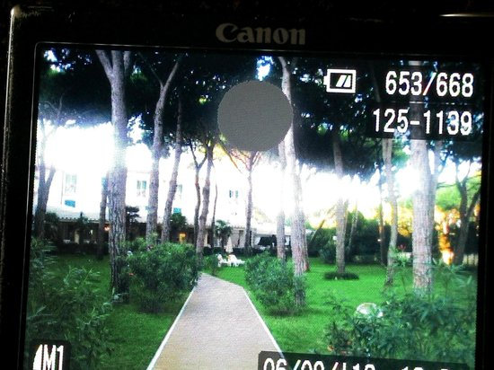 Gallia Hotel: garden