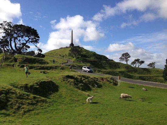 One Tree Hill (Maungakiekie) : 頂上への登り口から