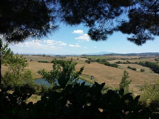 Belvedere Agriturismo : Natur pur