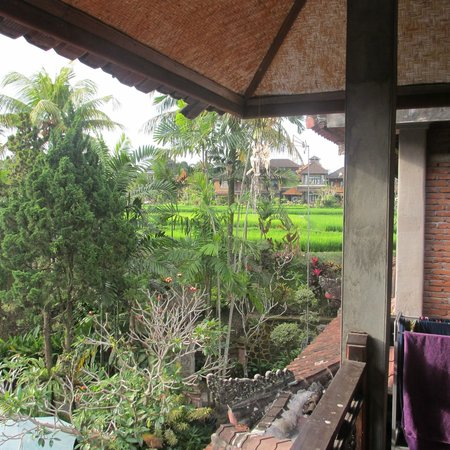 Artini 2 Cottages: View to rice fields next door from room above the bar