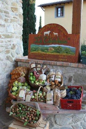 Agriturismo La Colombaia: prodotti biologici azienda