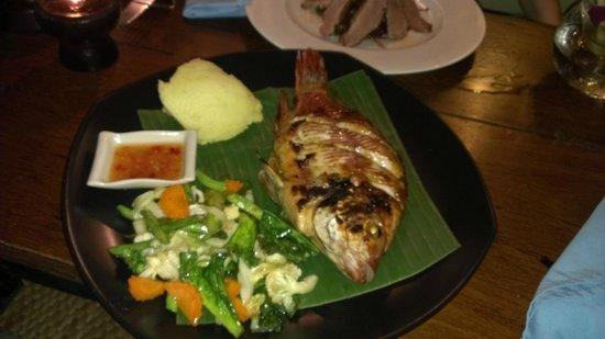 Luna Lounge Thong Nai Pan Noi : Barbecue Red Snapper