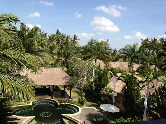 Furama Villas & Spa Ubud: view from restaurant