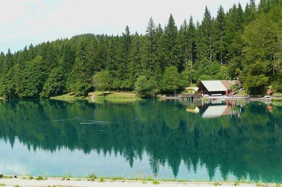 Alla Pineta: Lago inferiore di Fusine