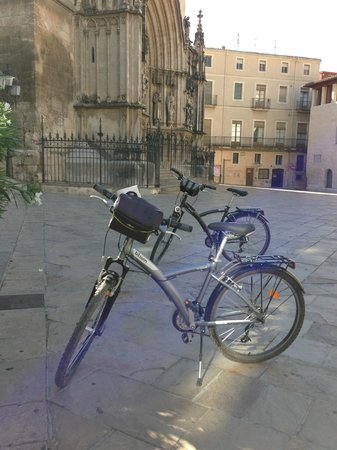 El Moli Tours : Penedès Bike Cava Food & Wine Tours 002