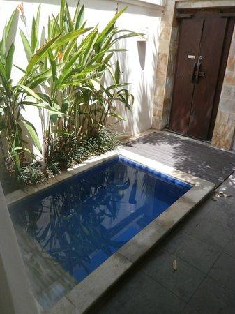 Plunge Pool In Villa Room Picture Of Best Western Kuta Villa Kuta Tripadvisor