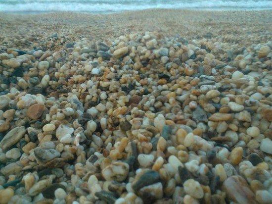 Pebble Beach : The actual pebbles