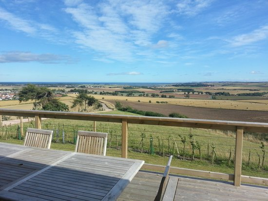 St Andrews Country Cabins: the view