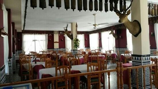 Restaurante Oasis 2: oasis 2 salon