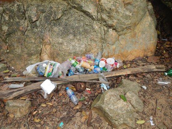 Pavilion Samui Villas & Resort : Détritus près de la cascade (excursion éléphants)