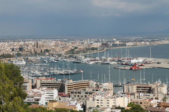 Boat trip around the harbour picture of city sightseeing for Centauro palma de mallorca