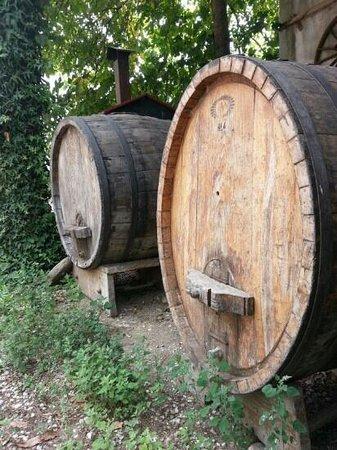 Agriturismo Il Giardino: Paolos wine