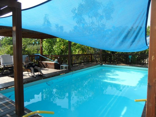 Naomi's B&B: The pool, which has a cover so the swimmers don't get sunburnt.