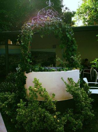 B&B Villa Vittoria : Garden