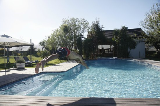 WedgeView Country House & Spa: Diving right in the winelands experience
