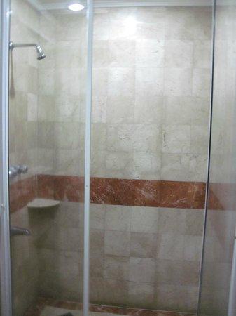 Orchid Garden Suites - Manila: Shower tube