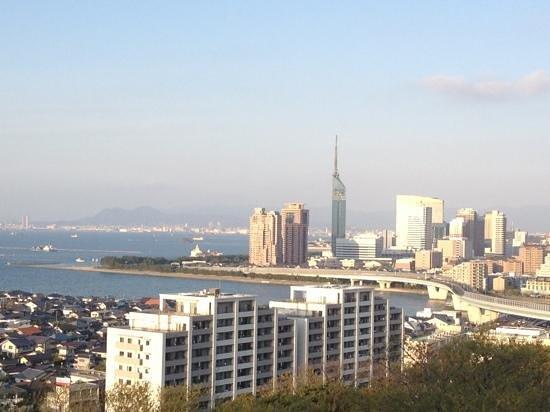 Atago Jinja Shrine: 愛宕神社の頂上からの眺め〜♪夜景も良いです!