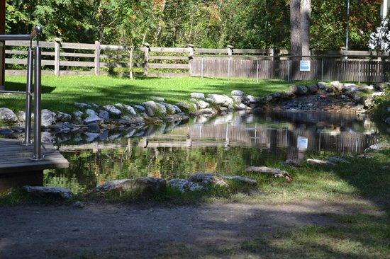 Parco e Percorso Salute: 3