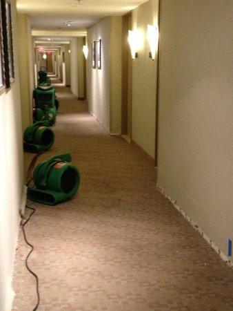 Hyatt Regency Baltimore Inner Harbor: Heater down the hall