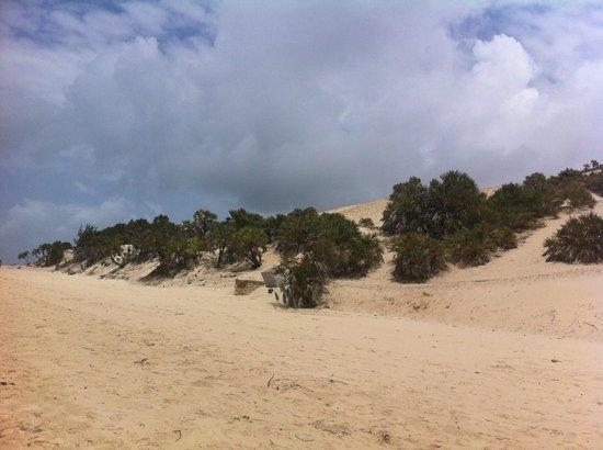 Peponi Hotel: More dunes