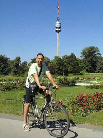 Donauinsel: In bicicletta nel verde