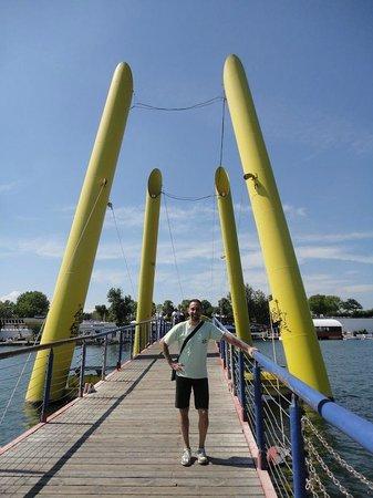 Donauinsel: Ponte sul Danubio