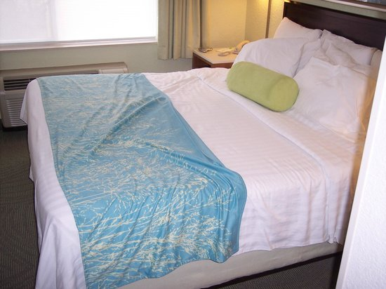 SpringHill Suites Portland Airport: RED HAIRS IN SHEETS!