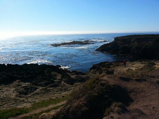 Mendocino Headlands State Park: mendocino headlands