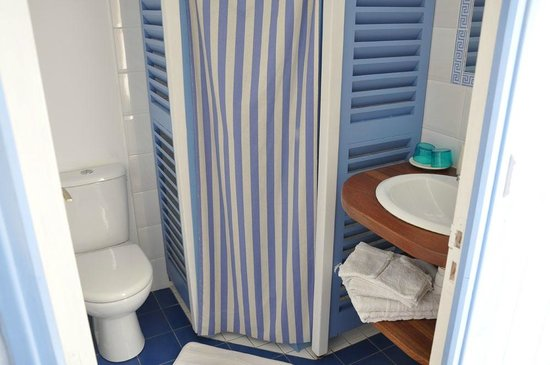 Palmier sur cour : Dusche WC