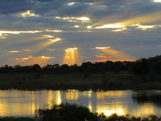 Thamalakane River Lodge : Sunset over the river
