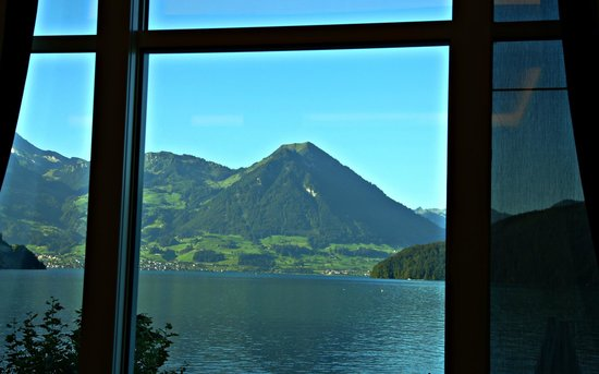 Park Hotel Vitznau: View from their lounge area out the window