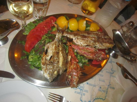 Barbounis : fresh fish (sorry but before the picture we already ate the squid and the octopus from the tray